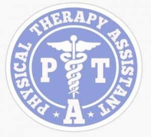 licensed physical therapist assistant