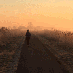 Seven Great Benefits of Being a Morning Runner